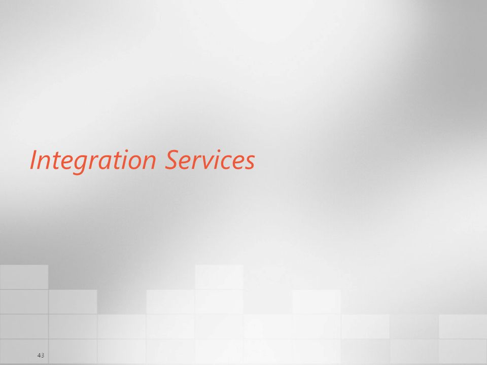 43 Integration Services
