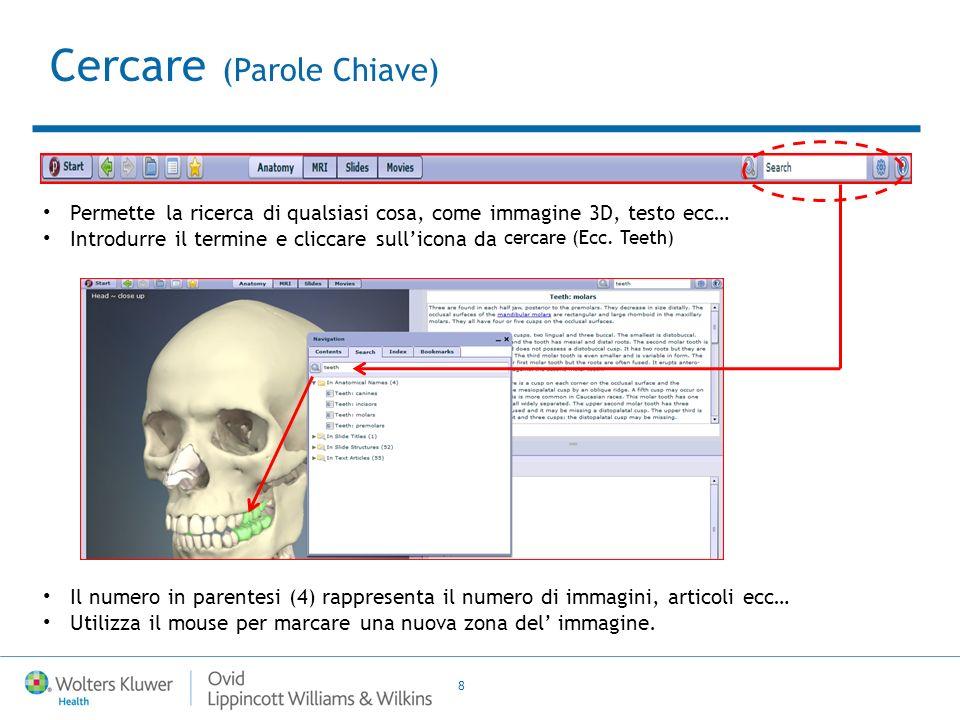 8 Permette la ricerca di qualsiasi cosa, come immagine 3D, testo ecc… Introdurre il termine e cliccare sullicona da cercare (Ecc.