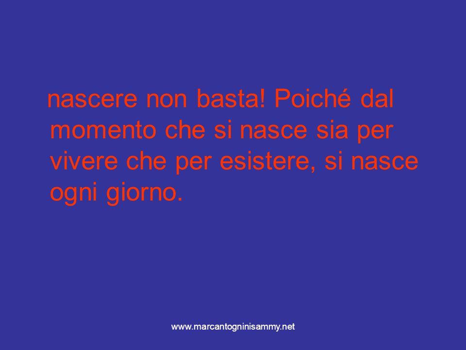 www.marcantogninisammy.net Essi sono sintetizzati dalla propriomelanocortina a livello diencefalico- ipofisario.