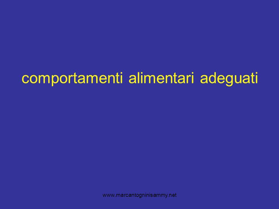 www.marcantogninisammy.net comportamenti alimentari adeguati