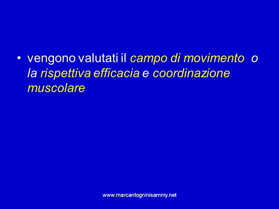 www.marcantogninisammy.net vengono valutati il campo di movimento o la rispettiva efficacia e coordinazione muscolare