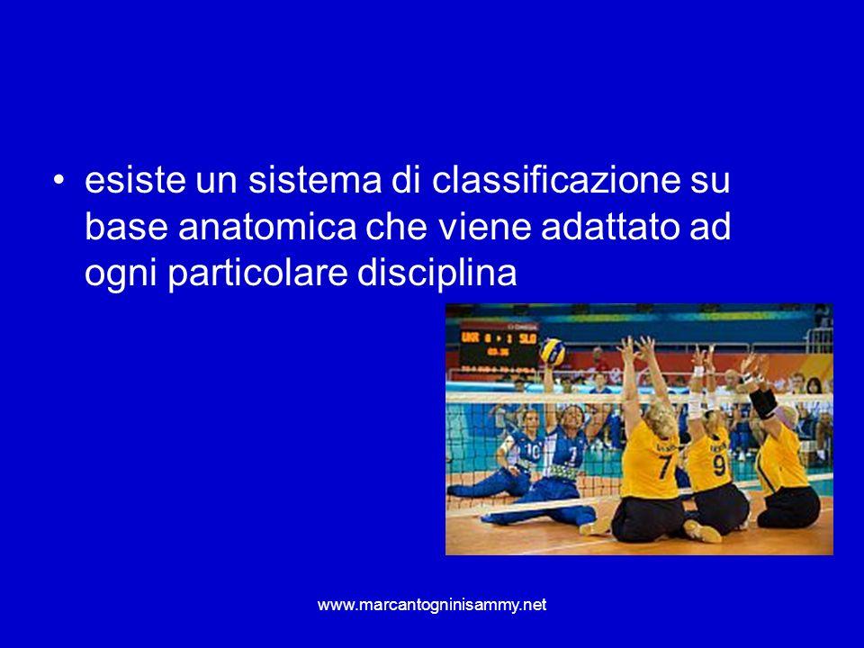 www.marcantogninisammy.net esiste un sistema di classificazione su base anatomica che viene adattato ad ogni particolare disciplina