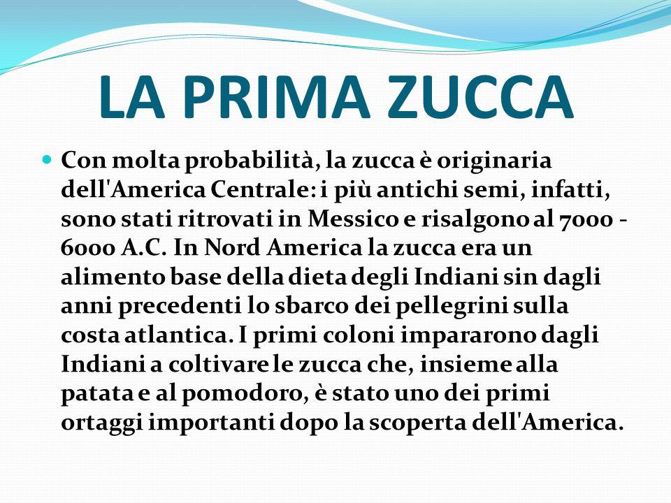 LA PRIMA ZUCCA Con molta probabilità, la zucca è originaria dell'America Centrale: i più antichi semi, infatti, sono stati ritrovati in Messico e risa