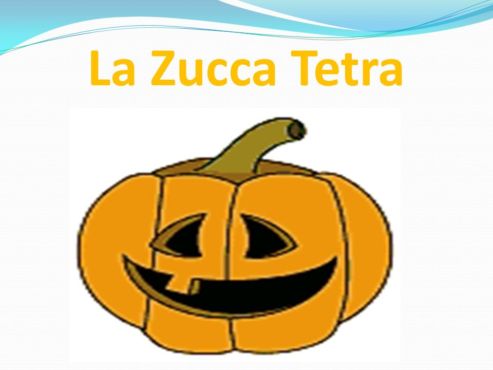 La Zucca Tetra