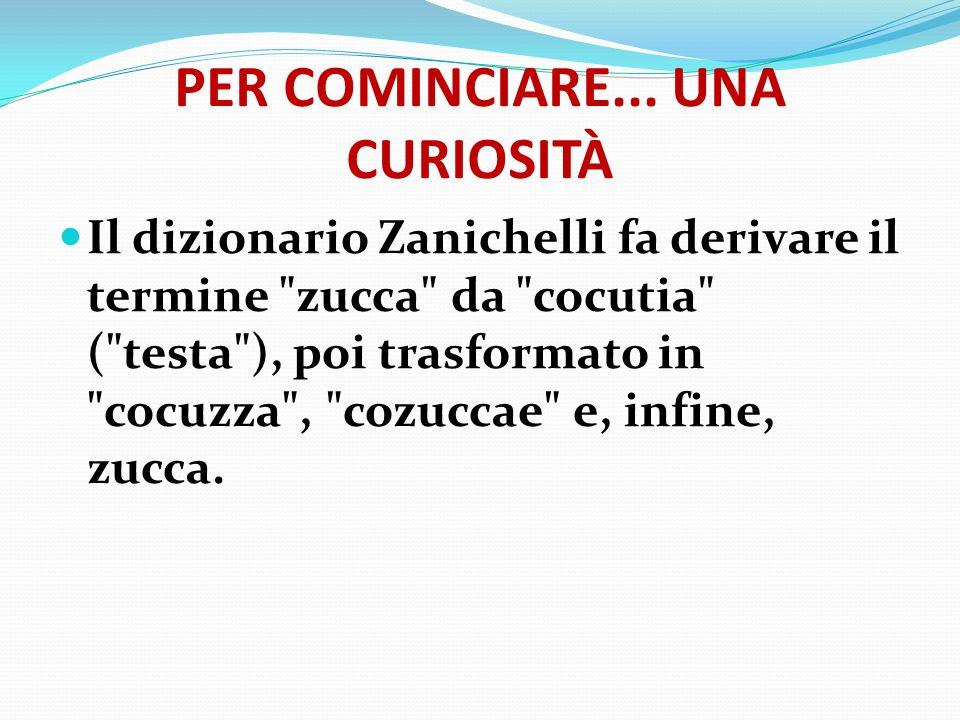 PER COMINCIARE... UNA CURIOSITÀ Il dizionario Zanichelli fa derivare il termine