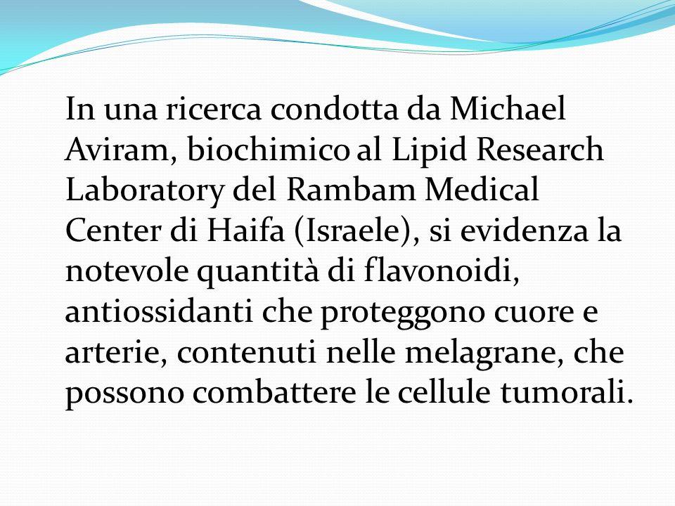 In una ricerca condotta da Michael Aviram, biochimico al Lipid Research Laboratory del Rambam Medical Center di Haifa (Israele), si evidenza la notevo