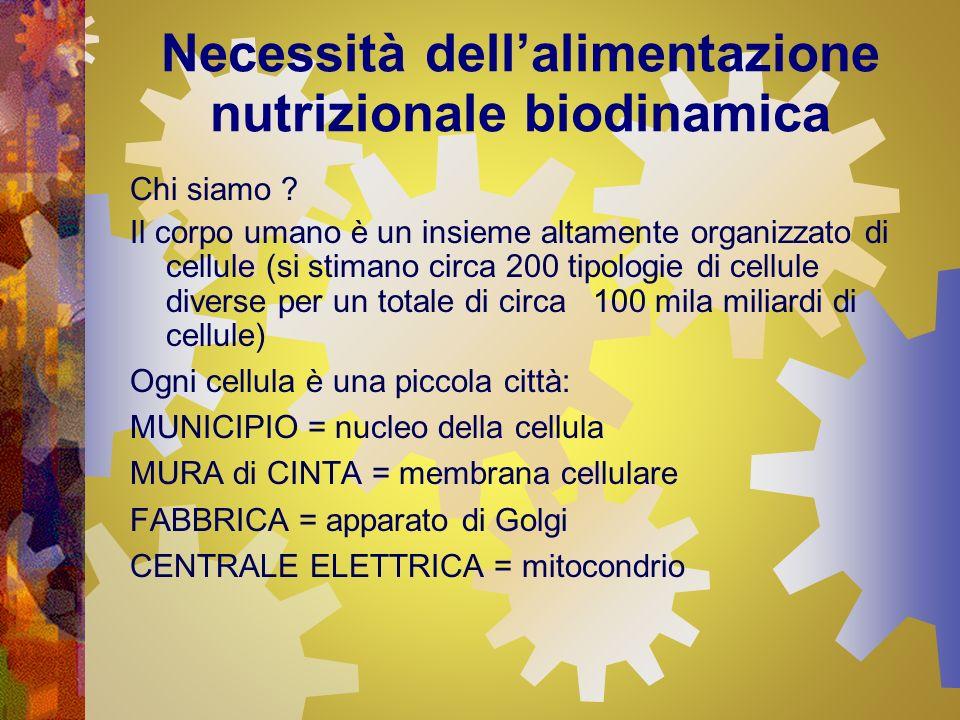 Necessità dellalimentazione nutrizionale biodinamica Chi siamo ? Il corpo umano è un insieme altamente organizzato di cellule (si stimano circa 200 ti