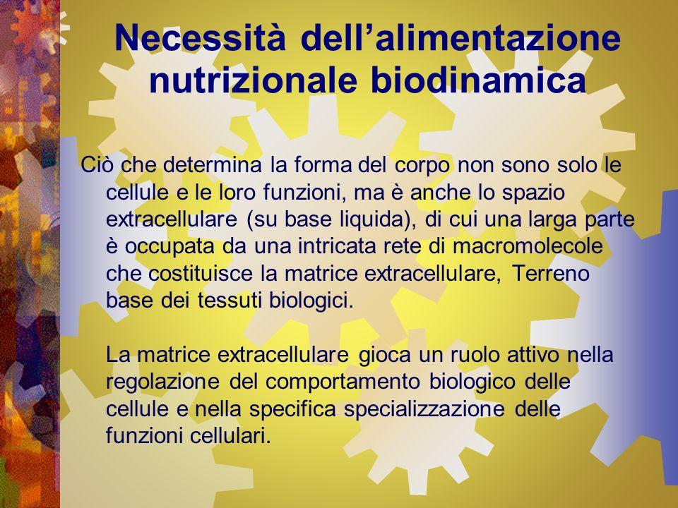 Necessità dellalimentazione nutrizionale biodinamica Ciò che determina la forma del corpo non sono solo le cellule e le loro funzioni, ma è anche lo s