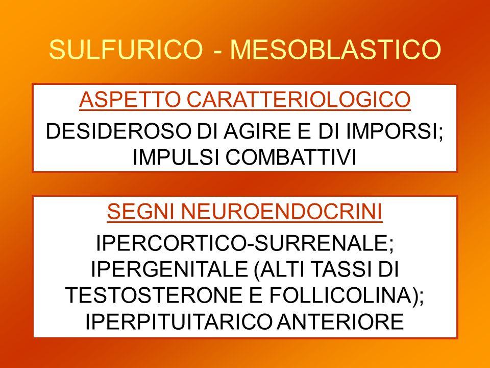 SULFURICO - MESOBLASTICO ASPETTO CARATTERIOLOGICO DESIDEROSO DI AGIRE E DI IMPORSI; IMPULSI COMBATTIVI SEGNI NEUROENDOCRINI IPERCORTICO-SURRENALE; IPE