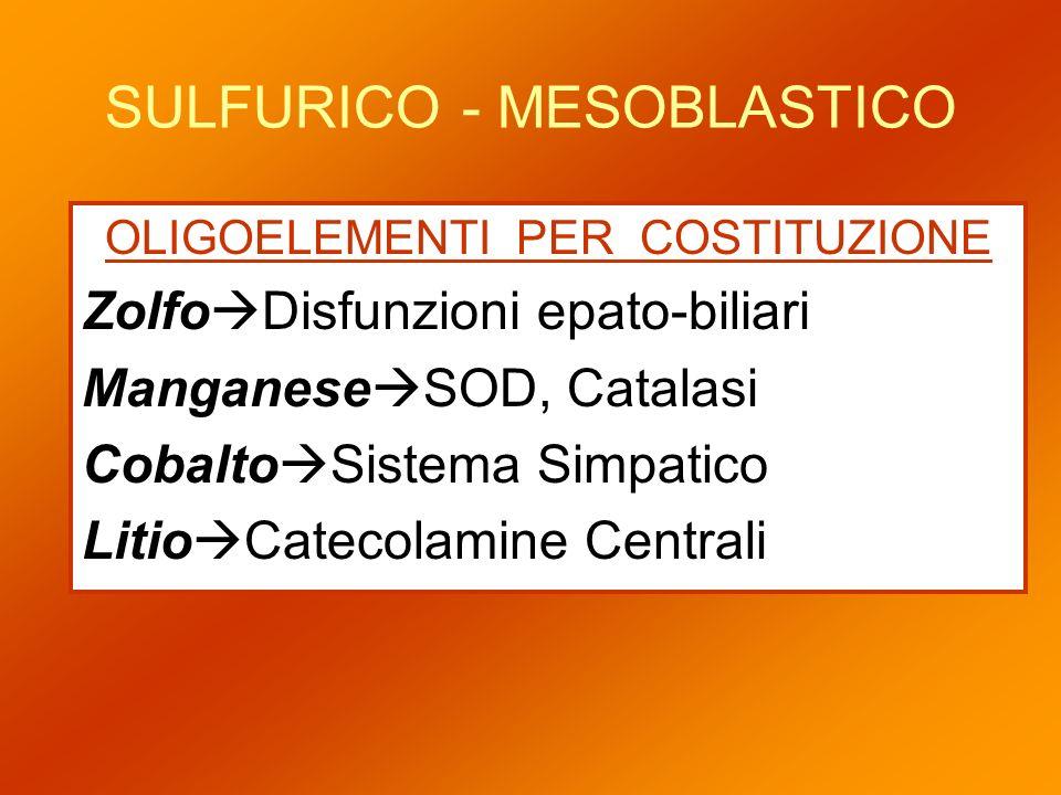 SULFURICO - MESOBLASTICO OLIGOELEMENTI PER COSTITUZIONE Zolfo Disfunzioni epato-biliari Manganese SOD, Catalasi Cobalto Sistema Simpatico Litio Cateco