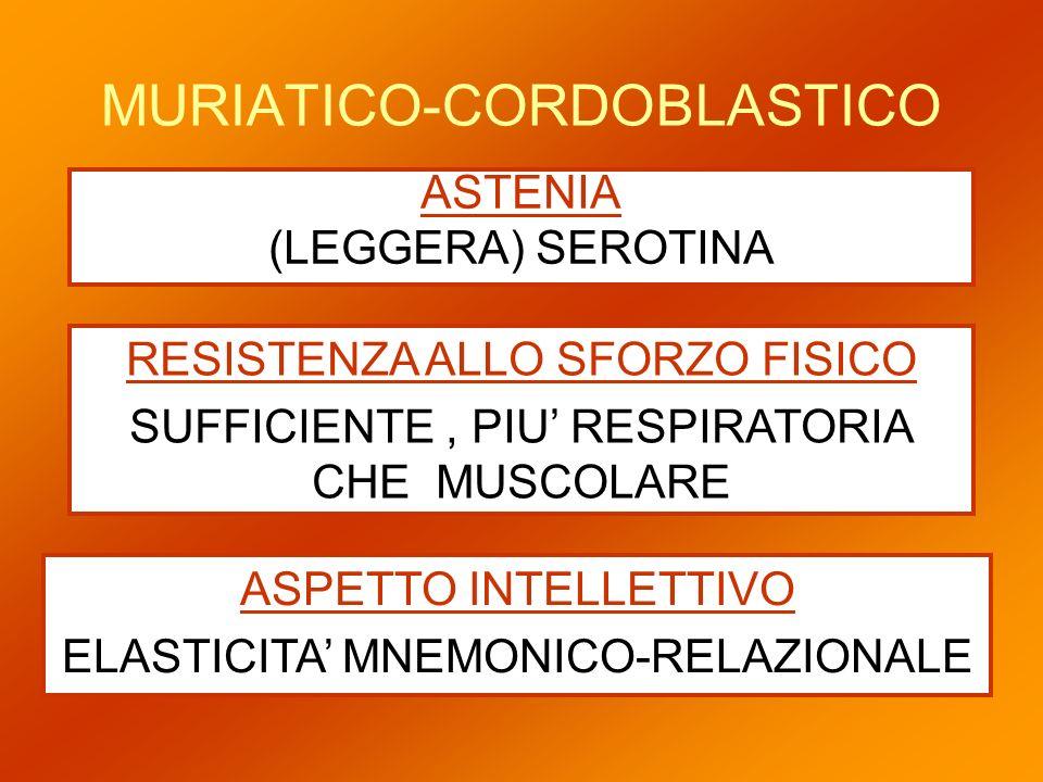 MURIATICO-CORDOBLASTICO ASTENIA (LEGGERA) SEROTINA RESISTENZA ALLO SFORZO FISICO SUFFICIENTE, PIU RESPIRATORIA CHE MUSCOLARE ASPETTO INTELLETTIVO ELAS