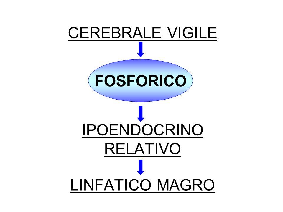 SULFURICO - MESOBLASTICO ASPETTO CARATTERIOLOGICO DESIDEROSO DI AGIRE E DI IMPORSI; IMPULSI COMBATTIVI SEGNI NEUROENDOCRINI IPERCORTICO-SURRENALE; IPERGENITALE (ALTI TASSI DI TESTOSTERONE E FOLLICOLINA); IPERPITUITARICO ANTERIORE
