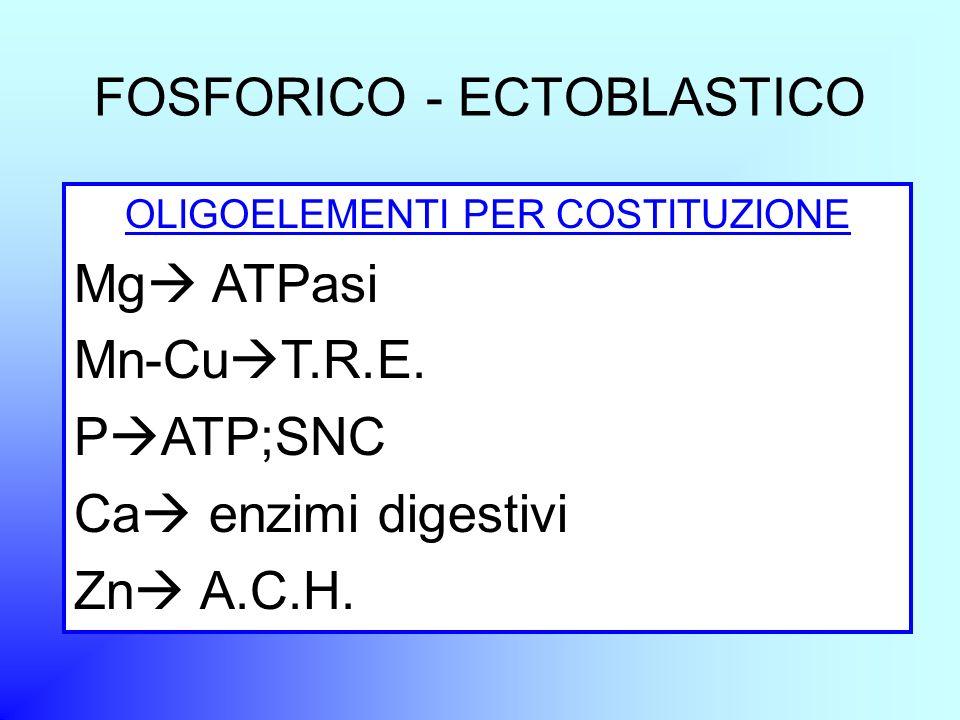 FOSFORICO - ECTOBLASTICO OLIGOELEMENTI PER COSTITUZIONE Mg ATPasi Mn-Cu T.R.E. P ATP;SNC Ca enzimi digestivi Zn A.C.H.
