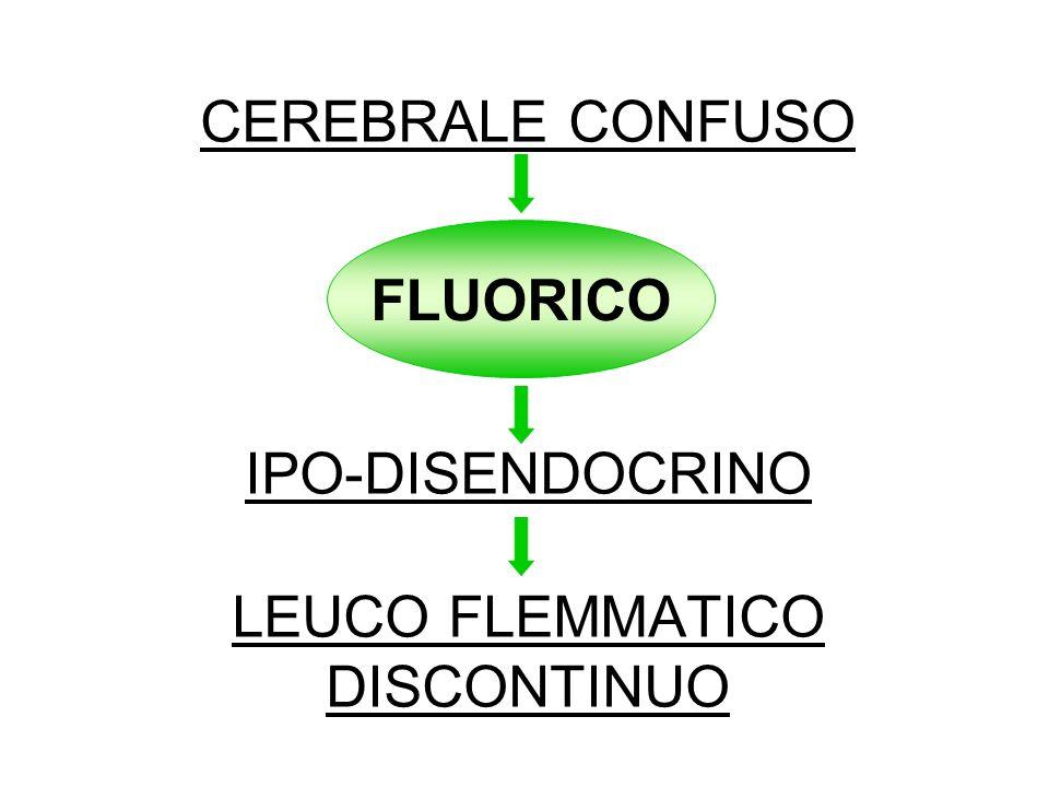 CEREBRALE CONFUSO IPO-DISENDOCRINO LEUCO FLEMMATICO DISCONTINUO FLUORICO