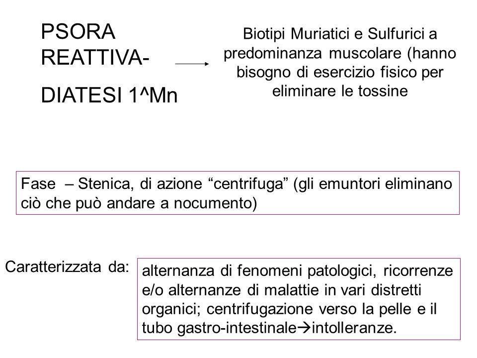 PSORA REATTIVA- DIATESI 1^Mn Biotipi Muriatici e Sulfurici a predominanza muscolare (hanno bisogno di esercizio fisico per eliminare le tossine Fase –