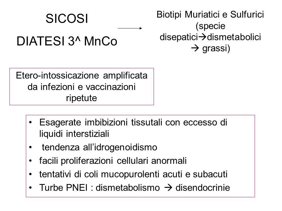 SICOSI DIATESI 3^ MnCo Biotipi Muriatici e Sulfurici (specie disepatici dismetabolici grassi) Etero-intossicazione amplificata da infezioni e vaccinaz