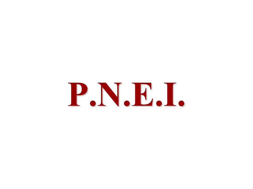 P.N.E.I.