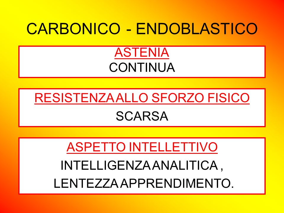 CARBONICO - ENDOBLASTICO ASPETTO CARATTERIOLOGICO CALMO, SONNOLENTO; APATICO, SEDENTARIO, RINUNCIATARIO, METODICO SEGNI NEUROENDOCRINI IPOGONADALE, IPOTIROIDEO, SECONDARIO IPERTIMICO, IPERPARATIROIDEO, VAGOTONICO, IPERTERMICO