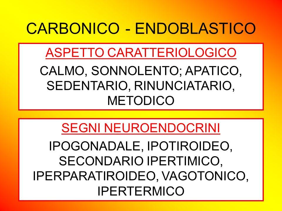 CARBONICO - ENDOBLASTICO ASPETTO CARATTERIOLOGICO CALMO, SONNOLENTO; APATICO, SEDENTARIO, RINUNCIATARIO, METODICO SEGNI NEUROENDOCRINI IPOGONADALE, IP