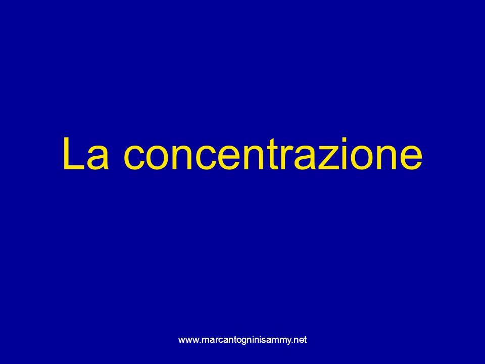 www.marcantogninisammy.net La concentrazione