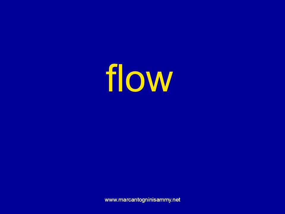 www.marcantogninisammy.net flow