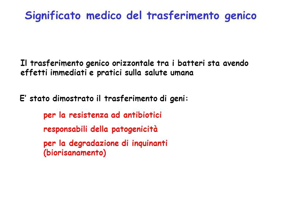 Significato medico del trasferimento genico Il trasferimento genico orizzontale tra i batteri sta avendo effetti immediati e pratici sulla salute uman