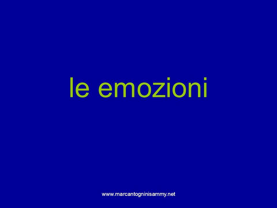 www.marcantogninisammy.net le emozioni