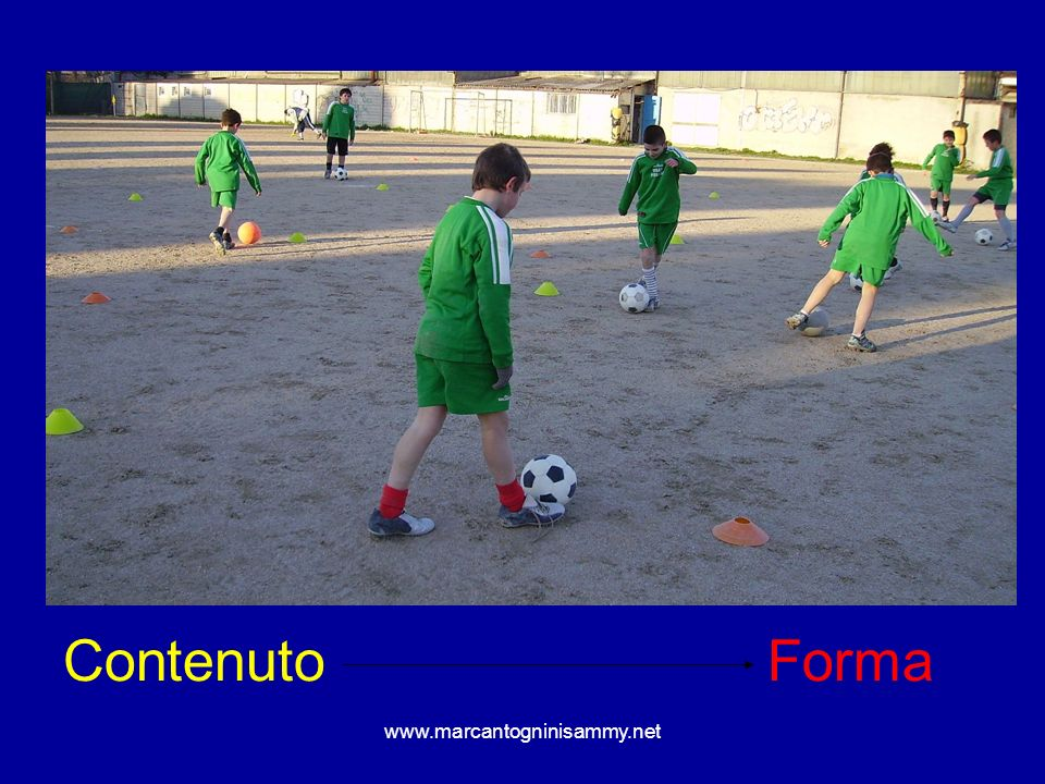 www.marcantogninisammy.net Contenuto Forma