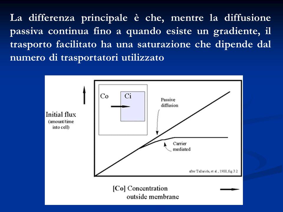 La differenza principale è che, mentre la diffusione passiva continua fino a quando esiste un gradiente, il trasporto facilitato ha una saturazione ch