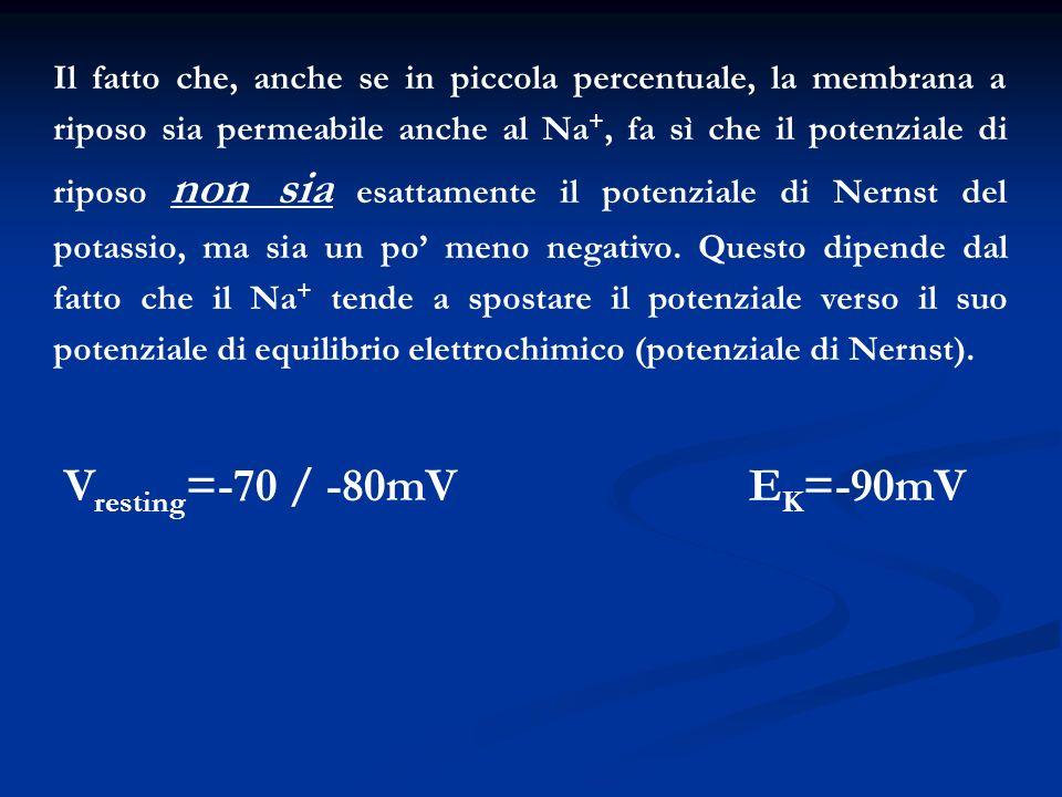 Il fatto che, anche se in piccola percentuale, la membrana a riposo sia permeabile anche al Na +, fa sì che il potenziale di riposo non sia esattament