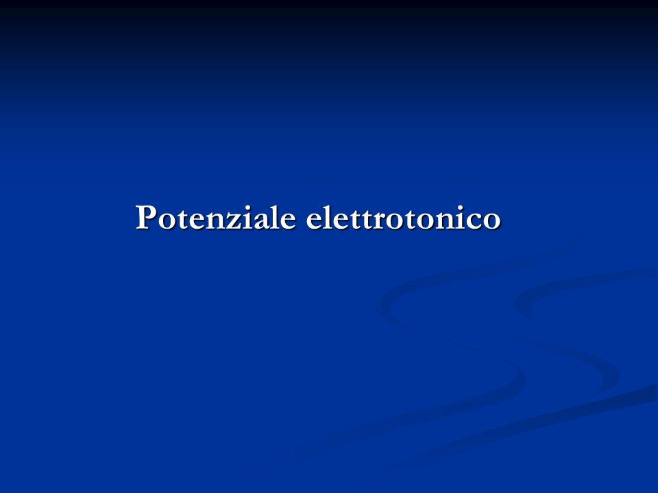 Potenziale elettrotonico