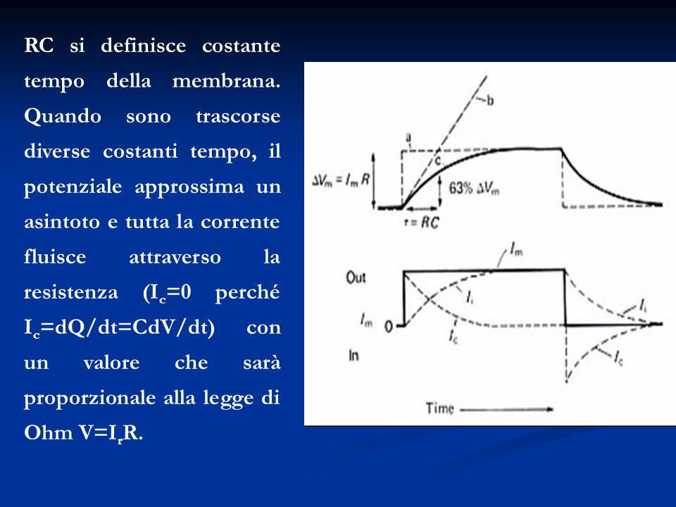 RC si definisce costante tempo della membrana. Quando sono trascorse diverse costanti tempo, il potenziale approssima un asintoto e tutta la corrente