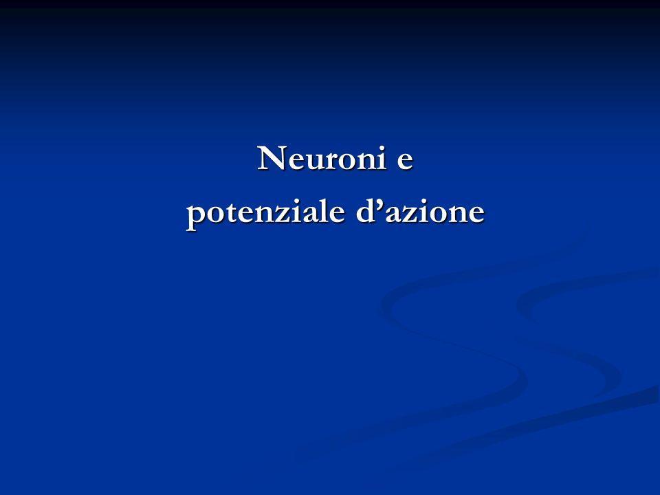 Neuroni e potenziale dazione