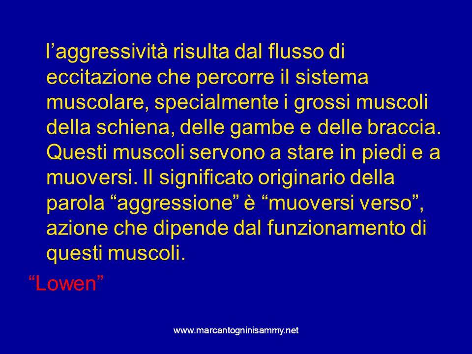 www.marcantogninisammy.net laggressività risulta dal flusso di eccitazione che percorre il sistema muscolare, specialmente i grossi muscoli della schi
