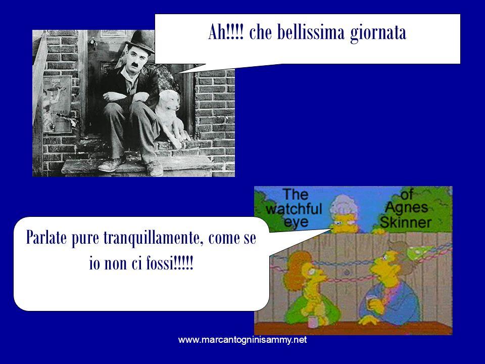 www.marcantogninisammy.net Ah!!!! che bellissima giornata Parlate pure tranquillamente, come se io non ci fossi!!!!!