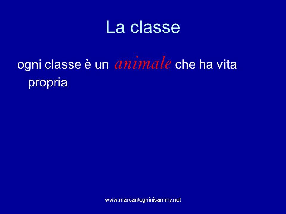 La classe ogni classe è un animale che ha vita propria www.marcantogninisammy.net
