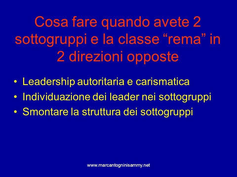 Cosa fare quando avete 2 sottogruppi e la classe rema in 2 direzioni opposte Leadership autoritaria e carismatica Individuazione dei leader nei sottog