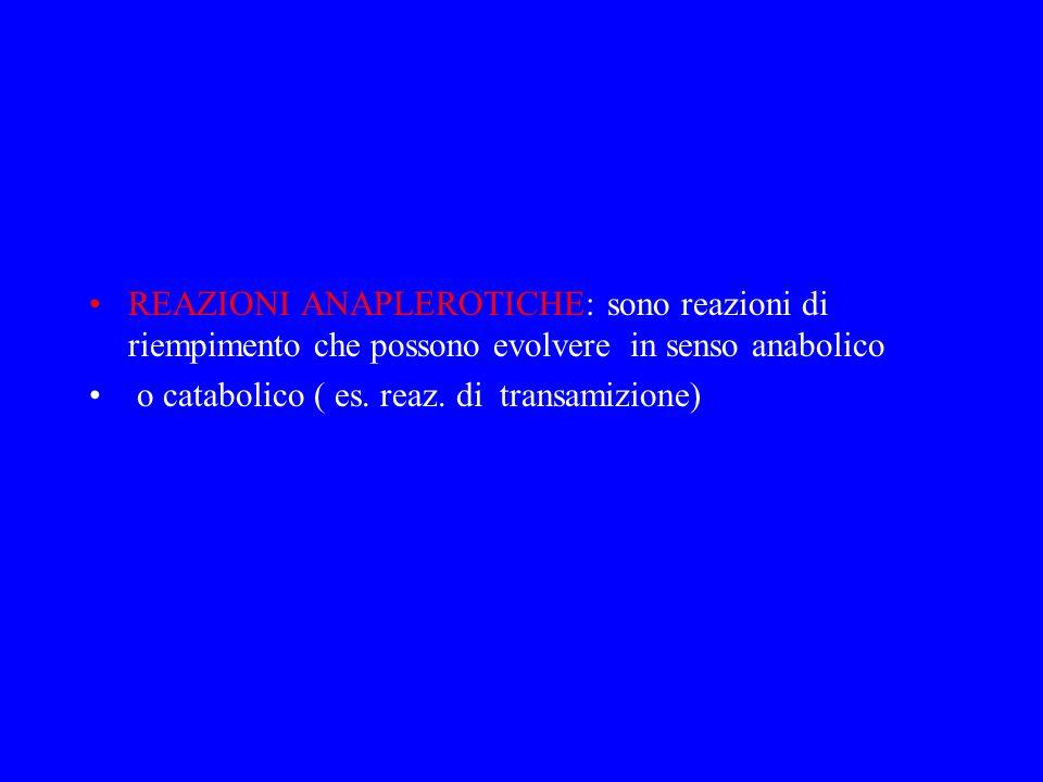 REAZIONI ANAPLEROTICHE: sono reazioni di riempimento che possono evolvere in senso anabolico o catabolico ( es. reaz. di transamizione)