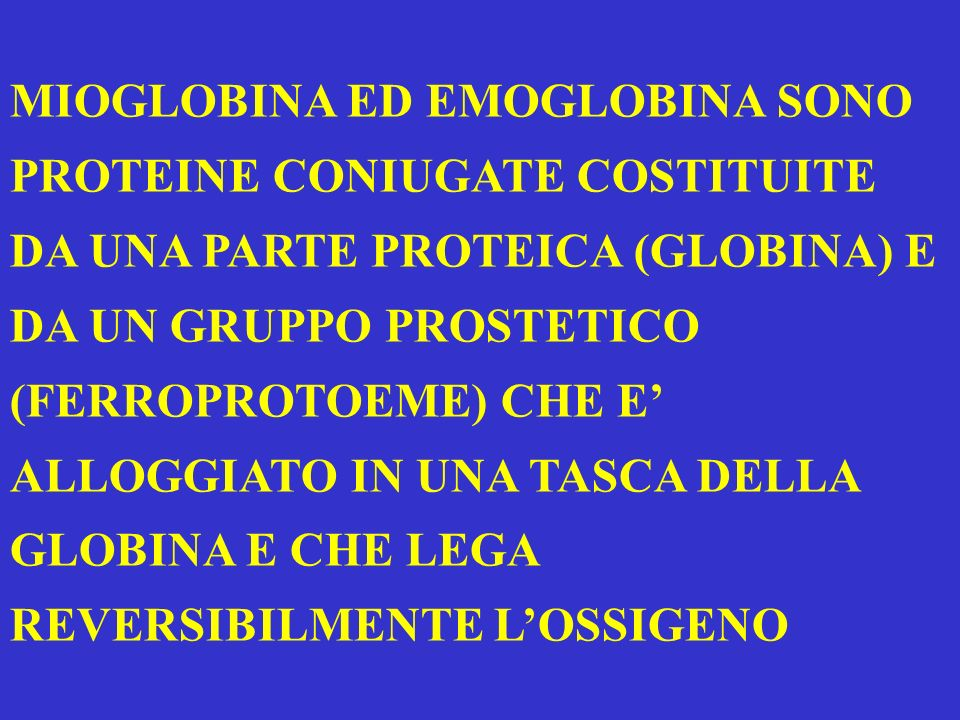 MIOGLOBINA ED EMOGLOBINA SONO PROTEINE CONIUGATE COSTITUITE DA UNA PARTE PROTEICA (GLOBINA) E DA UN GRUPPO PROSTETICO (FERROPROTOEME) CHE E ALLOGGIATO