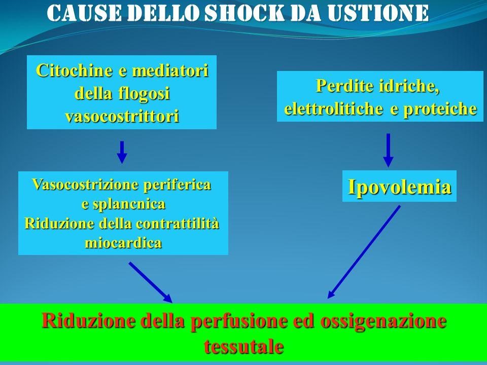 Citochine e mediatori della flogosi vasocostrittori Vasocostrizione periferica e splancnica Riduzione della contrattilità miocardica Riduzione della p