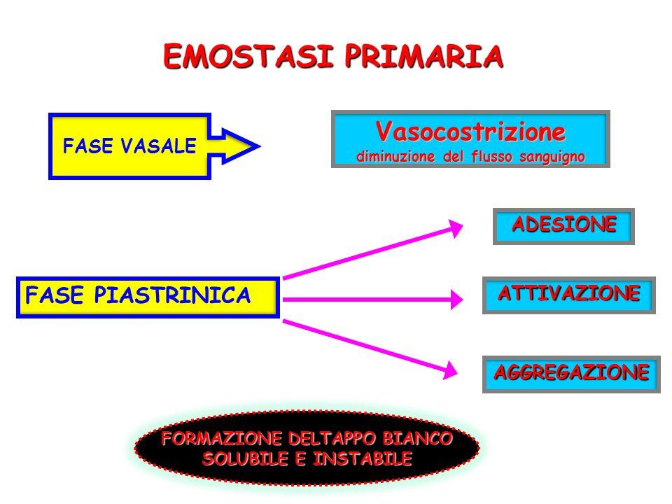 EMOSTASI PRIMARIA Vasocostrizione diminuzione del flusso sanguigno FASE PIASTRINICA FASE VASALE ADESIONE ATTIVAZIONE AGGREGAZIONE FORMAZIONE DELTAPPO