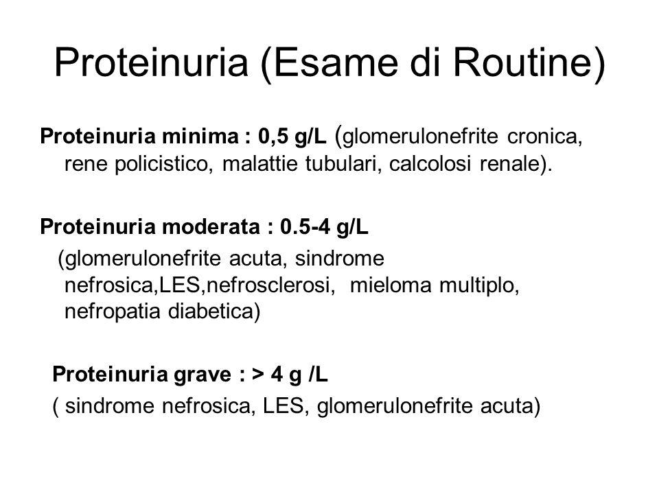 Proteinuria (Esame di Routine) Proteinuria minima : 0,5 g/L ( glomerulonefrite cronica, rene policistico, malattie tubulari, calcolosi renale). Protei