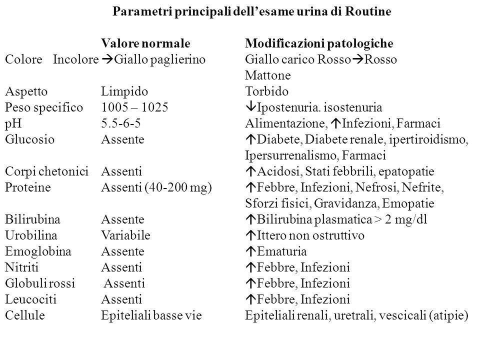 Parametri principali dellesame urina di Routine Valore normaleModificazioni patologiche ColoreIncolore Giallo paglierinoGiallo carico Rosso Rosso Matt