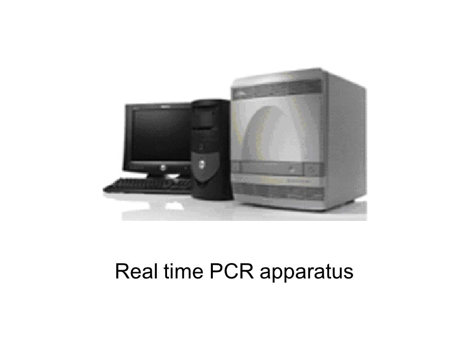 Real time PCR apparatus