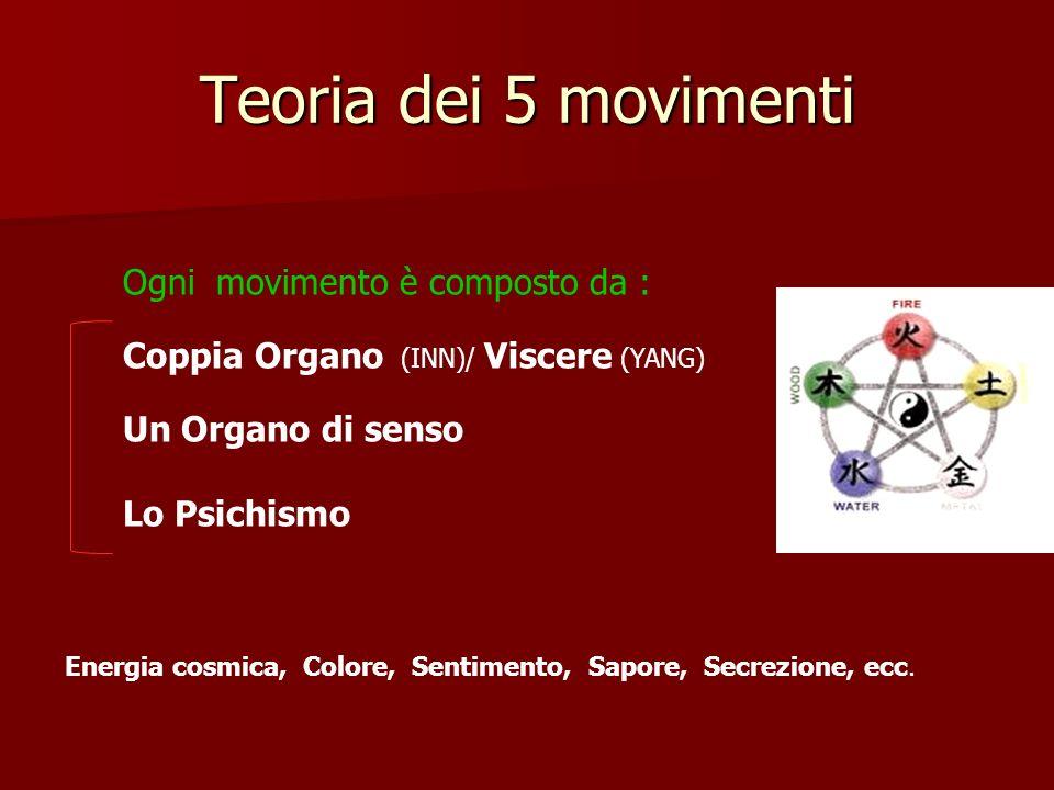 Teoria dei 5 movimenti Ogni movimento è composto da : Coppia Organo (INN)/ Viscere (YANG) Un Organo di senso Lo Psichismo Energia cosmica, Colore, Sen