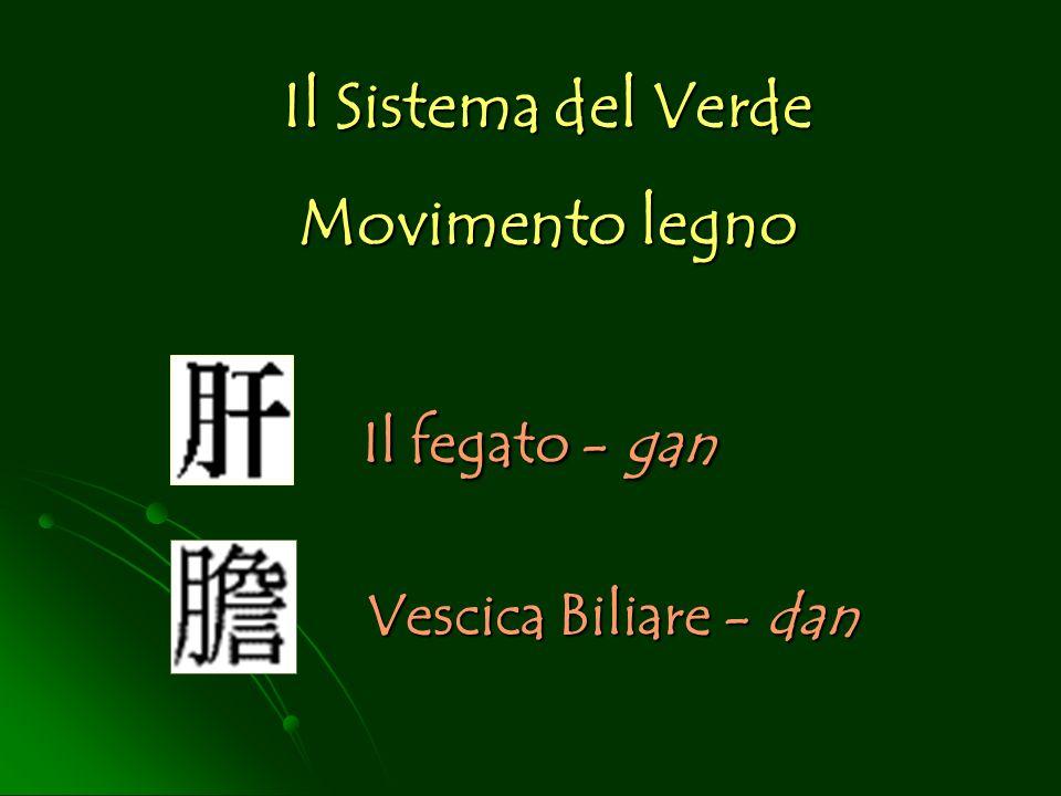 Il fegato - gan Il Sistema del Verde Movimento legno Vescica Biliare - dan
