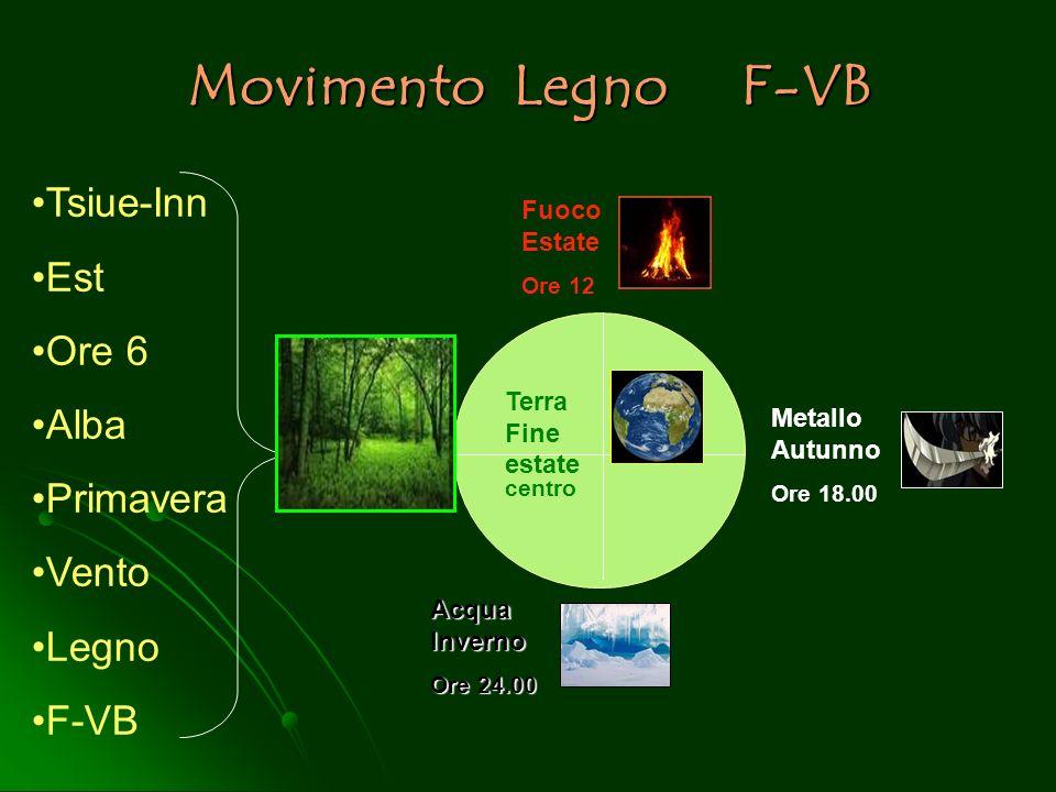 Movimento Legno F-VB Fuoco Estate Ore 12 Terra Fine estate centro Metallo Autunno Ore 18.00 Acqua Inverno Ore 24.00 Tsiue-Inn Est Ore 6 Alba Primavera