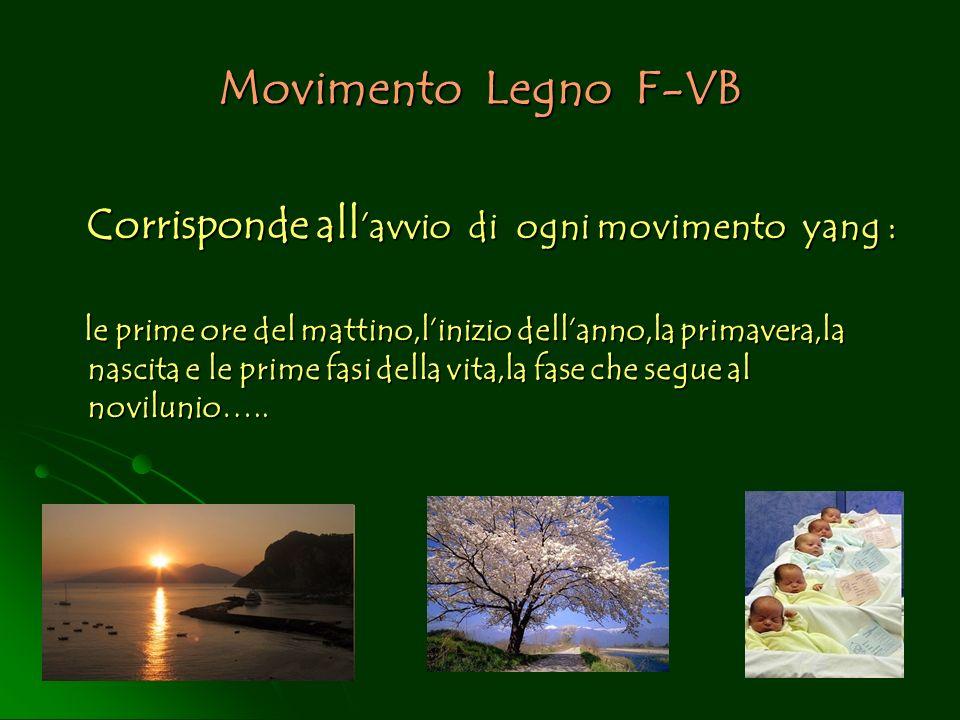Movimento Legno F-VB Corrisponde all avvio di ogni movimento yang : Corrisponde all avvio di ogni movimento yang : le prime ore del mattino,linizio de