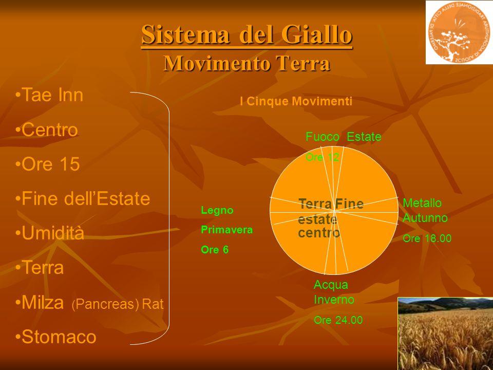 Sistema del Giallo Movimento Terra Fuoco Estate Ore 12 Terra Fine estate centro Metallo Autunno Ore 18.00 Acqua Inverno Ore 24.00 Tae Inn Centro Ore 1