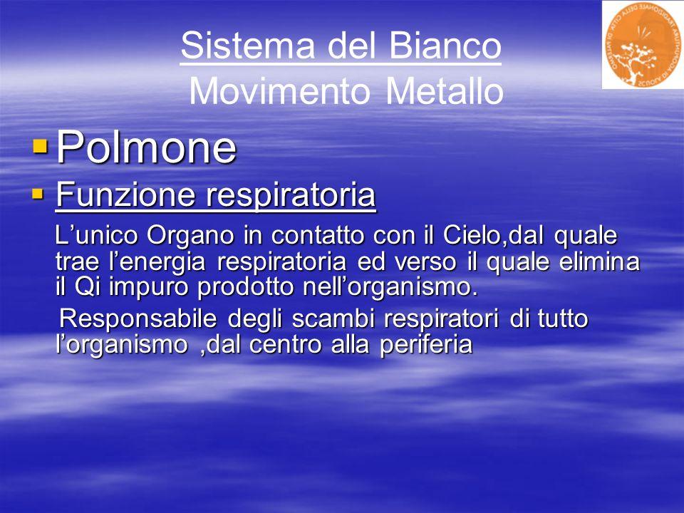 Sistema del Bianco Movimento Metallo Polmone Polmone Funzione respiratoria Funzione respiratoria Lunico Organo in contatto con il Cielo,dal quale trae